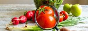 Segurança de Alimentos x Segurança Alimentar